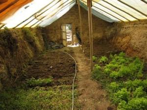 greenhouse_gardening