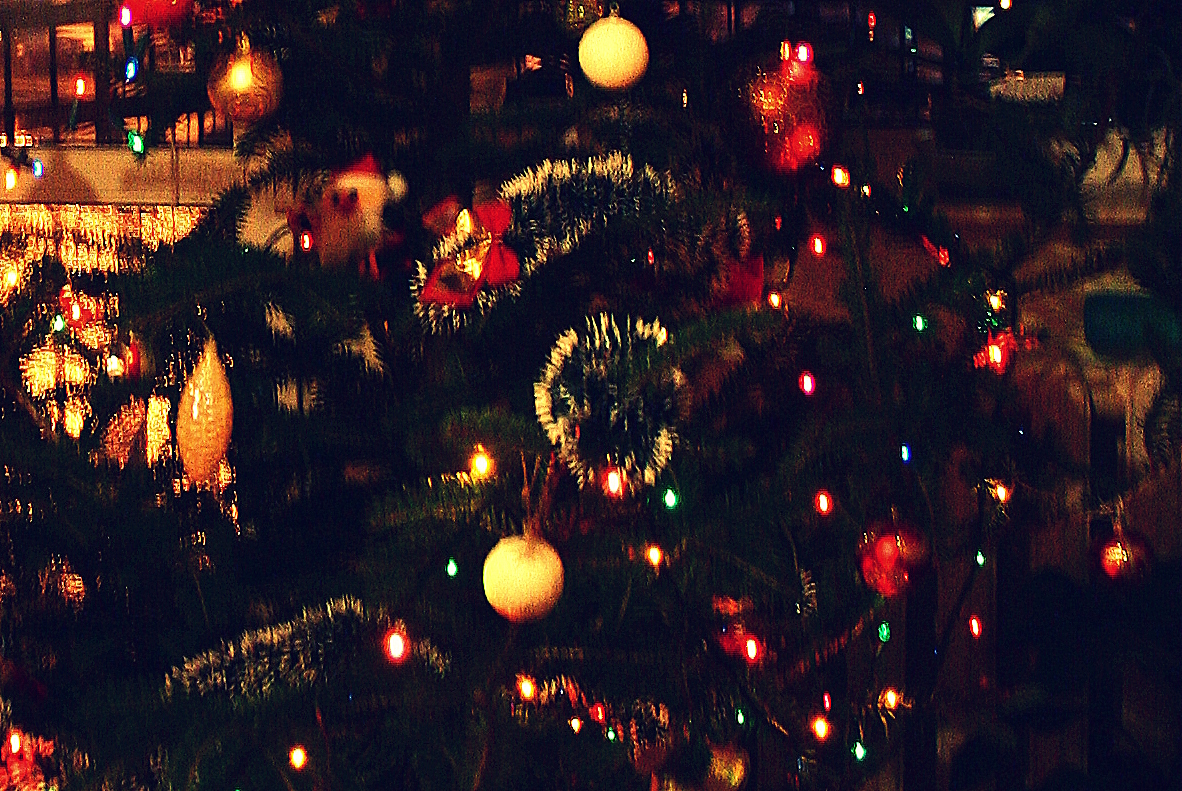 Solar powered christmas lights for a green holiday solar