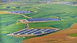 solar power plants Israel